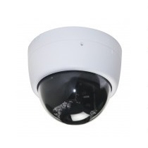 IR照明付きドームカメラ HLC-1NED